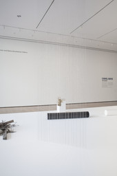 Carol Bove: The Equinox. Jul 20, 2013–Jan 12, 2014. 3 other works identified