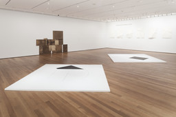 Dorothea Rockburne: Drawing Which Makes Itself. Sep 21, 2013–Feb 2, 2014. 8 other works identified