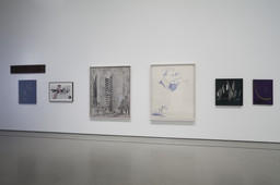 Alibis: Sigmar Polke 1963–2010. Apr 19–Aug 3, 2014.