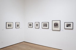 Pictures by Women: A History of Modern Photography. May 7, 2010–Apr 18, 2011.