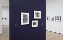 Pictures by Women: A History of Modern Photography. May 7, 2010–Apr 18, 2011. 3 other works identified