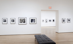 Pictures by Women: A History of Modern Photography. May 7, 2010–Apr 18, 2011. 2 other works identified