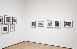 Pictures by Women: A History of Modern Photography. May 7, 2010–Apr 18, 2011. 7 other works identified