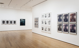 Staging Action: Performance in Photography since 1960. Jan 28–May 9, 2011. 1 other work identified