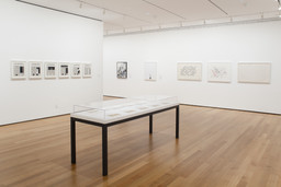 I Am Still Alive: Politics and Everyday Life in Contemporary Drawing. Mar 23–Sep 19, 2011. 4 other works identified