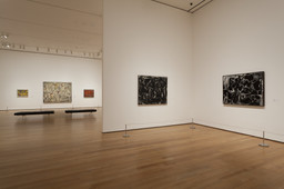 de Kooning: A Retrospective. Sep 18, 2011–Jan 9, 2012.