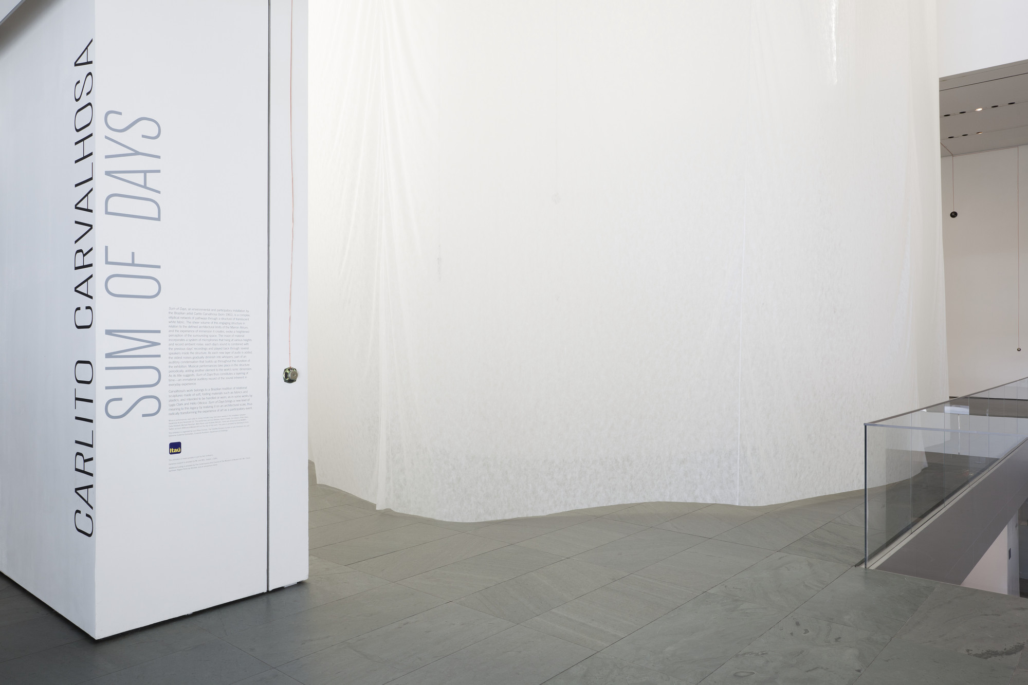 "Installation view of the exhibition, ""Carlito Carvalhosa:  Sum of Days"" August 24, 2011–November 14, 2011. IN2168.1. Photograph by Jonathan Muzikar."