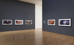 Cindy Sherman. Feb 26–Jun 11, 2012.