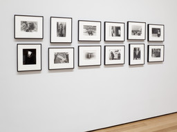 Cindy Sherman. Feb 26–Jun 11, 2012. 5 other works identified