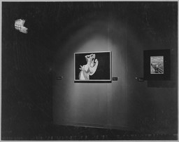 Timeless Aspects of Modern Art. Nov 16, 1948–Jan 23, 1949.