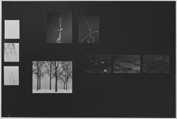 Harry Callahan and Robert Frank. Jan 30–Apr 1, 1962. 2 other works identified