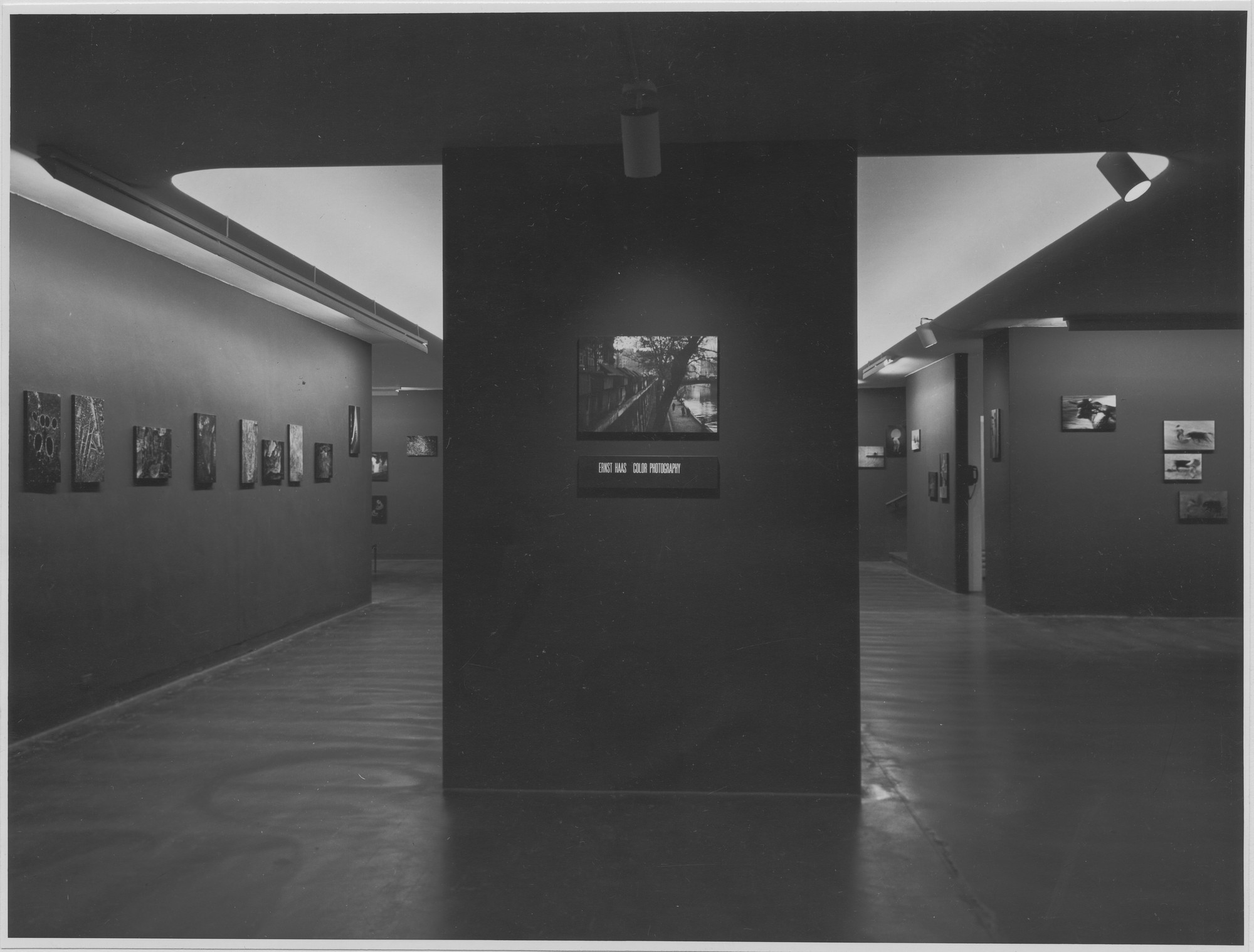 "Installation view of the exhibition, ""Ernst Haas:  Color Photography."" August 21, 1962–October 28, 1962. Photographic Archive. The Museum of Modern Art Archives, New York. IN709.1. Photograph by R. P. Peterson."