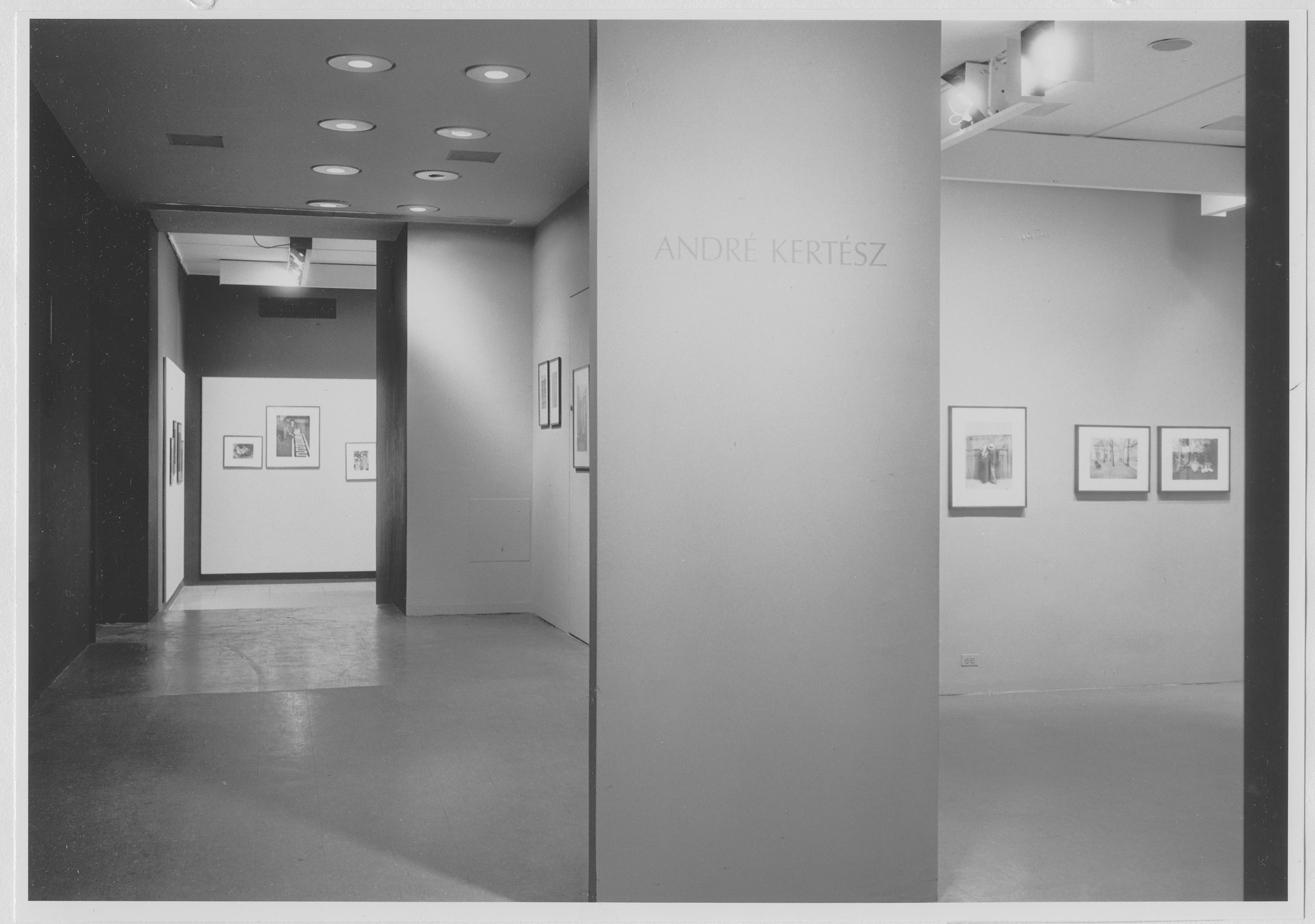 "Installation view of the exhibition, ""Andre Kertész."" November 24, 1964–January 28, 1965. Photographic Archive. The Museum of Modern Art Archives, New York. IN753.1"