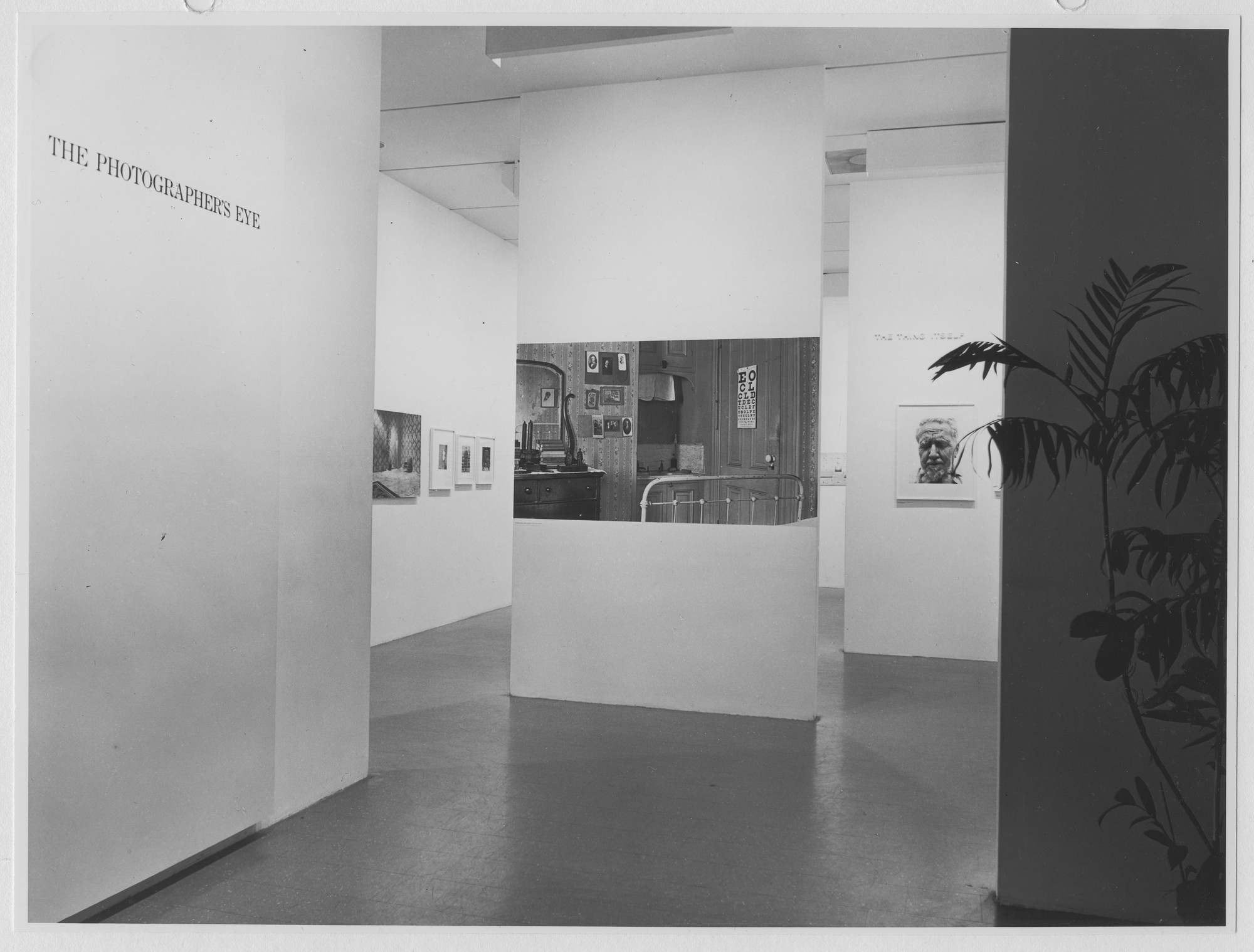 "Installation view of the exhibition, ""The Photographer's Eye,"" in the series, ""Art in a Changing World:  1884-1964."" May 27, 1964–August 23, 1964. Photographic Archive. The Museum of Modern Art Archives, New York. IN741.1. Photograph by Rolf Petersen."