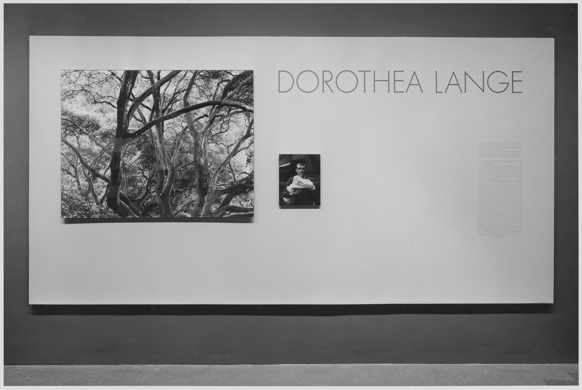 "Installation view of the exhibition, ""Dorothea Lange."" January 26, 1966–April 10, 1966. Photographic Archive. The Museum of Modern Art Archives, New York. IN789.1. Photograph by Rolf Petersen."