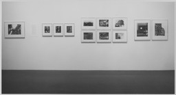 Berenice Abbott. Dec 10, 1970–Feb 28, 1971. 1 other work identified