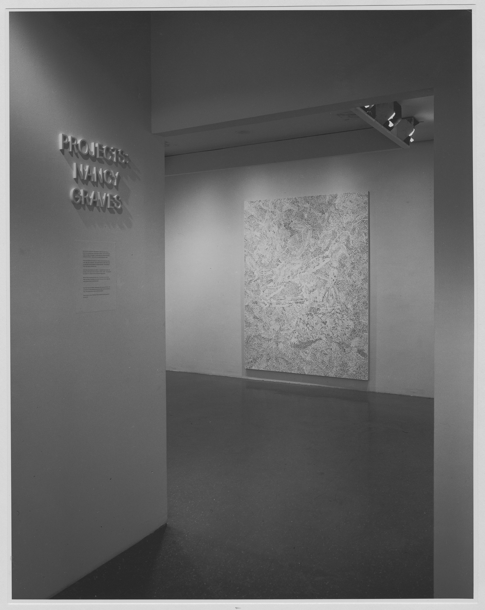 "Installation view of the exhibition, ""Projects: Nancy Graves."" December 15, 1971–January 24, 1972 (Paintings, Northwest Galleries); December 15, 1971–February 7, 1972 (Sculpture, Far West Gallery). Photographic Archive. The Museum of Modern Art Archives, New York. IN986.1. Photograph by James Mathews."