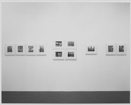 Atget's Trees. Jun 7–Sep 17, 1972. 3 other works identified