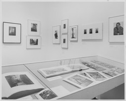 Photography: Recent Acquisitions, 1974–1976. May 6–Jul 18, 1976.