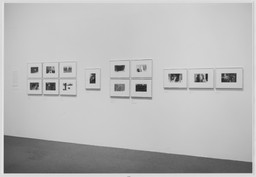 Lee Friedlander. Dec 6, 1974–Feb 17, 1975. 1 other work identified