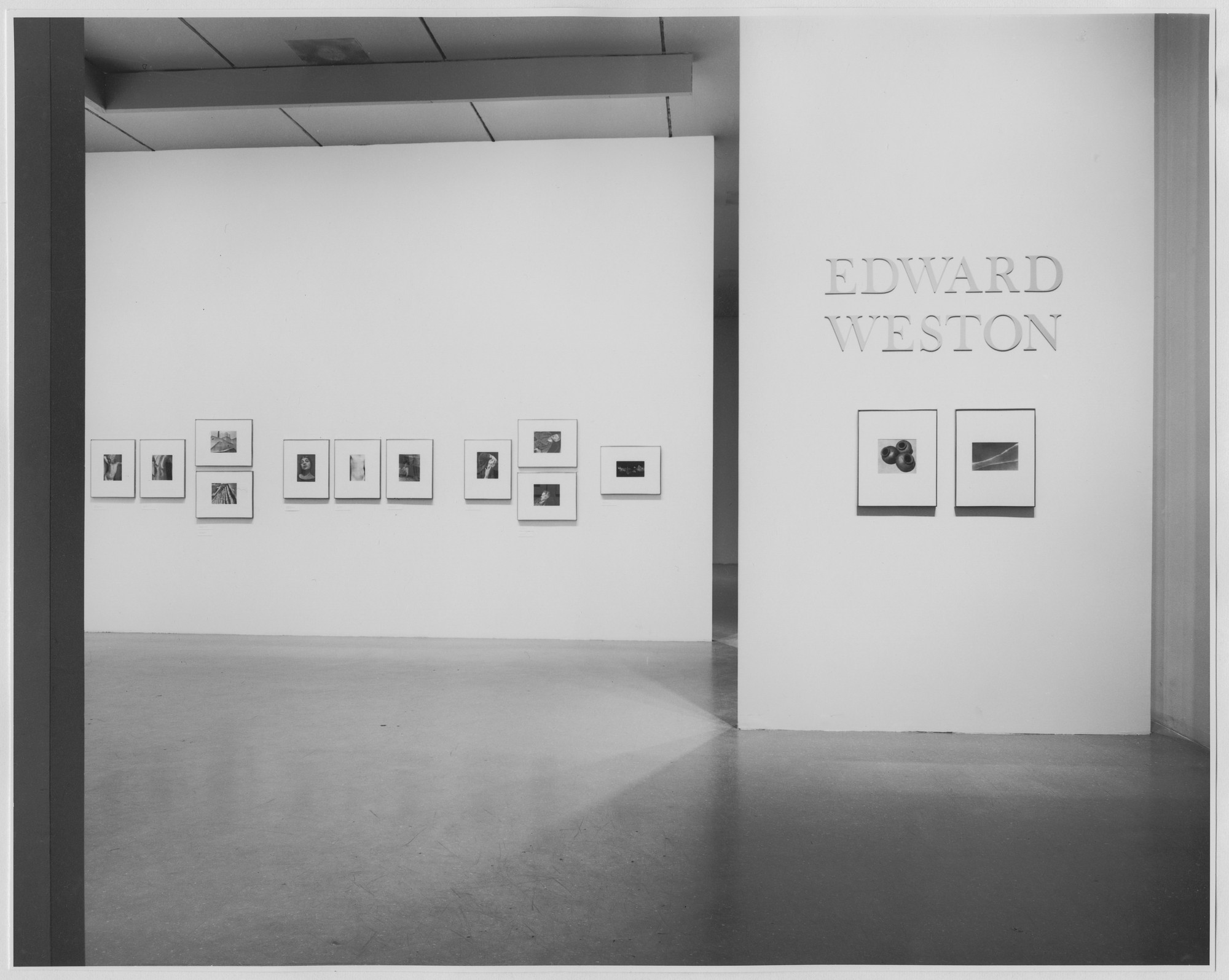 "Installation view of the exhibition, ""Edward Weston."" January 29, 1975–March 30, 1975. Photographic Archive. The Museum of Modern Art Archives, New York. IN1085.1. Photograph by Katherine Keller."