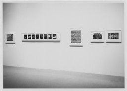 Mirrors and Windows: American Photography since 1960. Jul 26–Oct 2, 1978. 1 other work identified
