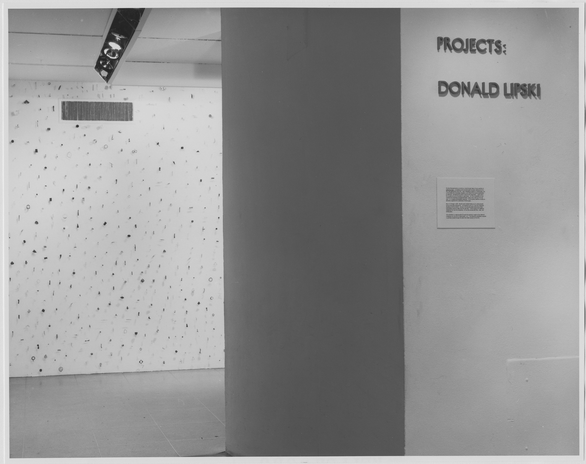 "Installation view of the exhibition, ""Projects: Donald Lipski"" February 8, 1979–March 18, 1979. Photographic Archive. The Museum of Modern Art Archives, New York. IN1248.1. Photograph by Katherine Keller."