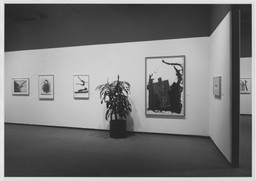 The Painter and the Printer: Robert Motherwell's Graphics. Oct 30–Dec 16, 1980.