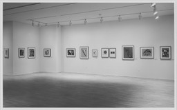 A Century of Modern Drawing, 1881–1981. Mar 1–16, 1982.