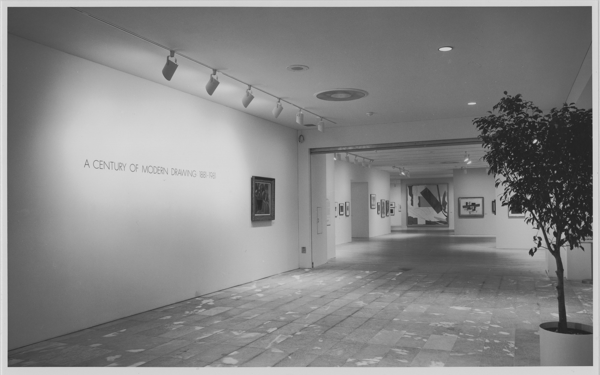 "Installation view of the exhibition, ""A Century of Modern Drawings"" March 1, 1982–March 16, 1982. Photographic Archive. The Museum of Modern Art Archives, New York. IN1329.1. Photograph by Mali Olatunji."