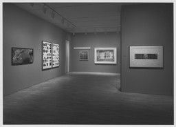 Big Pictures by Contemporary Photographers. Apr 13–Jun 28, 1983.