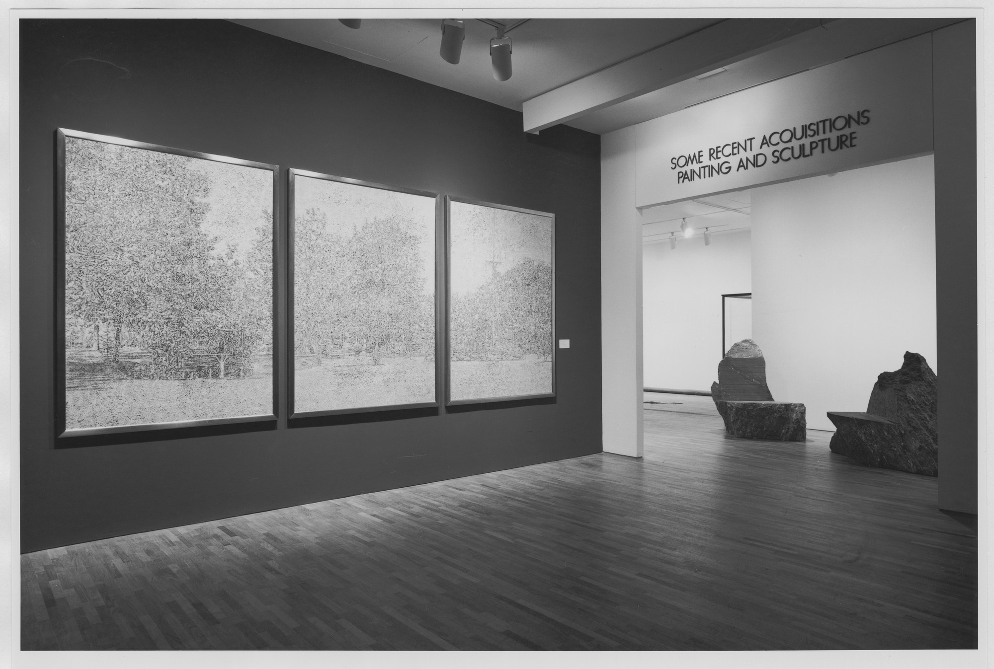 "Installation view of the exhibition, ""Some Recent Acquisitions:  Painting and Sculpture - Part I"" May 27, 1983–October 11, 1983. Photographic Archive. The Museum of Modern Art Archives, New York. IN1354.1. Photograph by Katherine Keller."