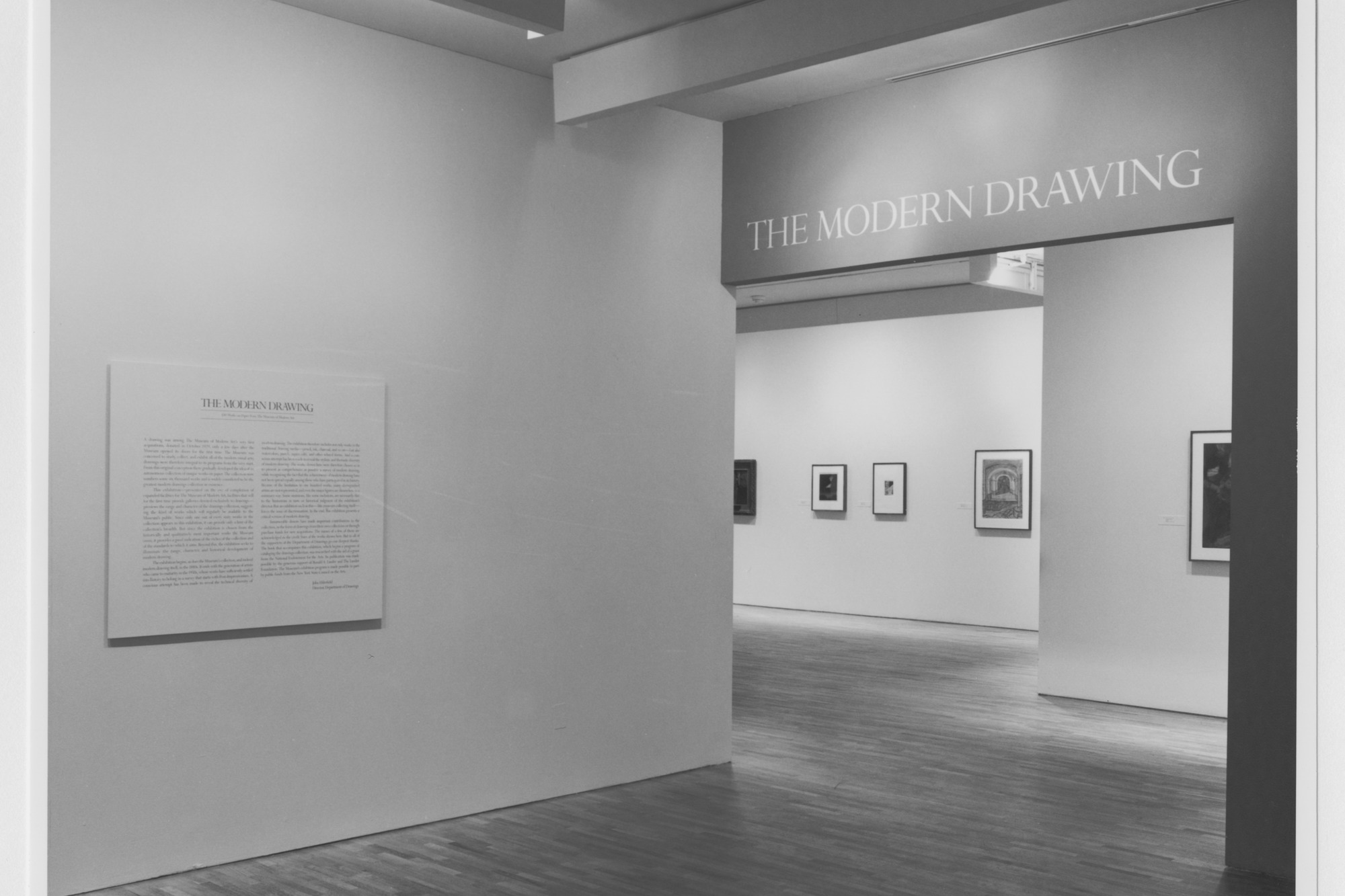 The Modern Drawing 100 Works On Paper From The Museum Of