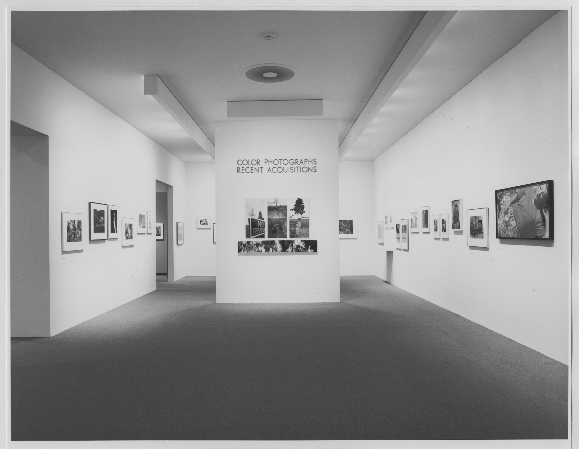 "Installation view of the exhibition, ""Color Photographs: Recent Acquisitions"" August 18, 1984–November 6, 1984. Photographic Archive. The Museum of Modern Art Archives, New York. IN1380.1. Photograph by Katherine Keller."