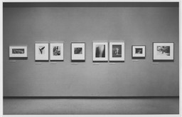A Personal View: Photography in the Collection of Paul F. Walter. May 23–Aug 13, 1985. 3 other works identified