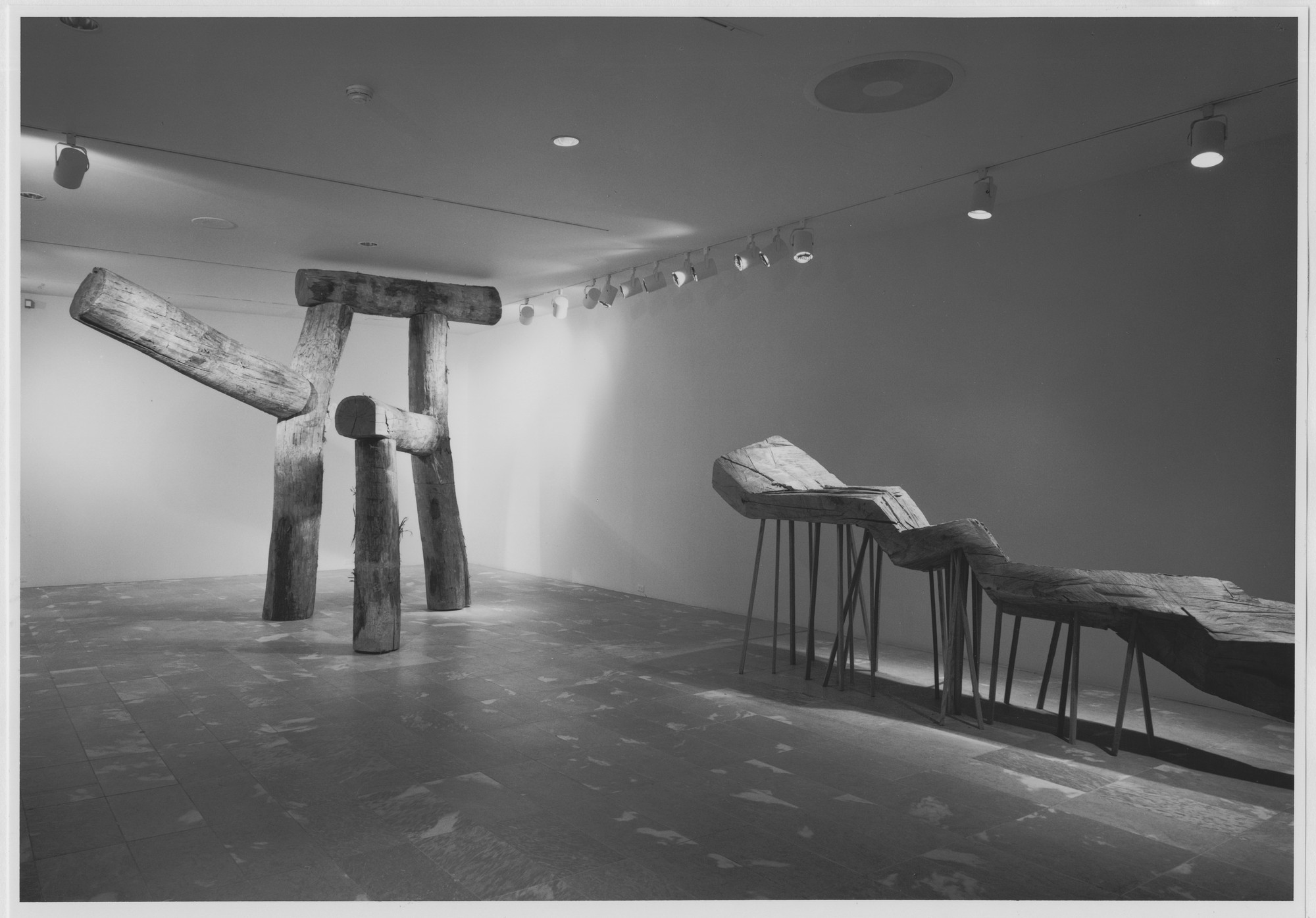 "Installation view of the exhibition, ""Projects: Magdalena Jetelova"" March 14, 1987–April 28, 1987. Photographic Archive. The Museum of Modern Art Archives, New York. IN1442.1. Photograph by Mali Olatunji."
