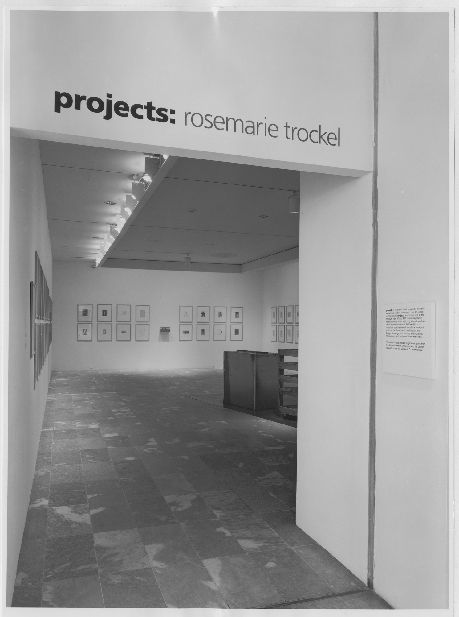 "Installation view of the exhibition, ""Projects: Rosemarie Trockel"" February 13, 1988–April 3, 1988. Photographic Archive. The Museum of Modern Art Archives, New York. IN1477.1. Photograph by Mali Olatunji."