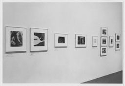 Photography Gallery Reinstallation. Jan 18, 1990. 1 other work identified