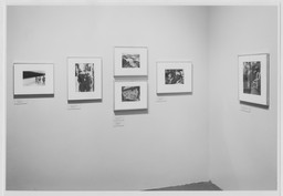 Photography Gallery Reinstallation. Jan 18, 1990. 4 other works identified