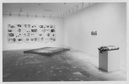 Projects 24: Kiki Smith. Nov 9, 1990–Jan 1, 1991.