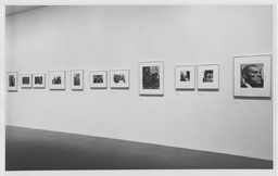 Mean Streets: American Photography from the Collection, 1940s–1980s. Apr 18–Jul 14, 1991. 1 other work identified