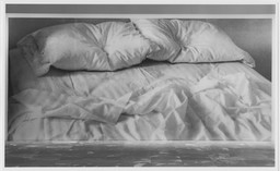 Projects 34: Felix Gonzalez-Torres. May 16–Jun 30, 1992.