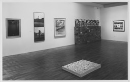 More than One Photography: Works since 1980 from the Collection. May 14–Aug 9, 1992. 2 other works identified