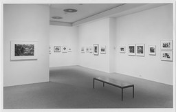 Recent Acquisitions: Photography. Feb 4–Apr 6, 1993. 1 other work identified