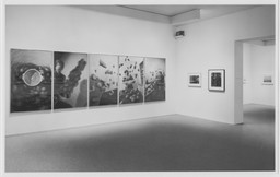 Recent Acquisitions: Photography. Feb 4–Apr 6, 1993.