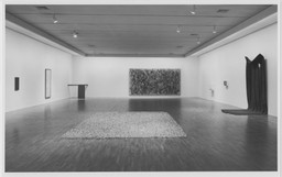 Contemporary Works from the Collection. Feb 26–May 2, 1993.