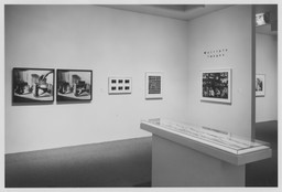 Multiple Images: Photographs Since 1965 from the Collection. Jul 15–Oct 5, 1993.