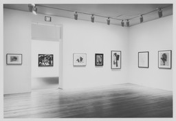 Modern Drawing: A Selection from the Collection, 1884–1961. Oct 23, 1993–Feb 15, 1994. 1 other work identified