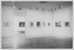 Modern Drawing Part II: A Selection from the Collection 1959–1991. Feb 24–Jun 14, 1994. 3 other works identified