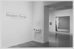 Artist's Choice: Elizabeth Murray. Jun 20–Aug 22, 1995.